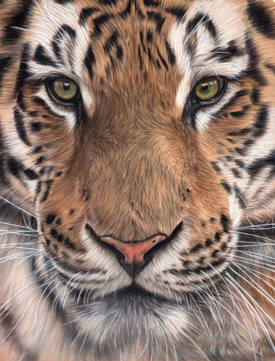 Close Encounter by valerie simms -  sized 12x16 inches. Available from Whitewall Galleries